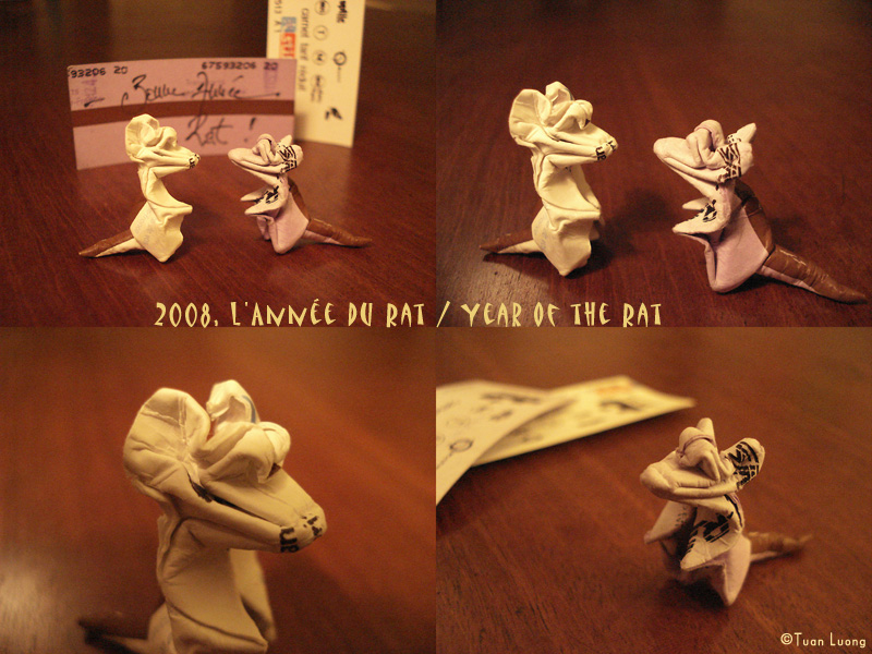 2008 - Year of the Rat - by Tuan